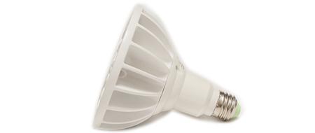Kelly LED Bulbs (4)